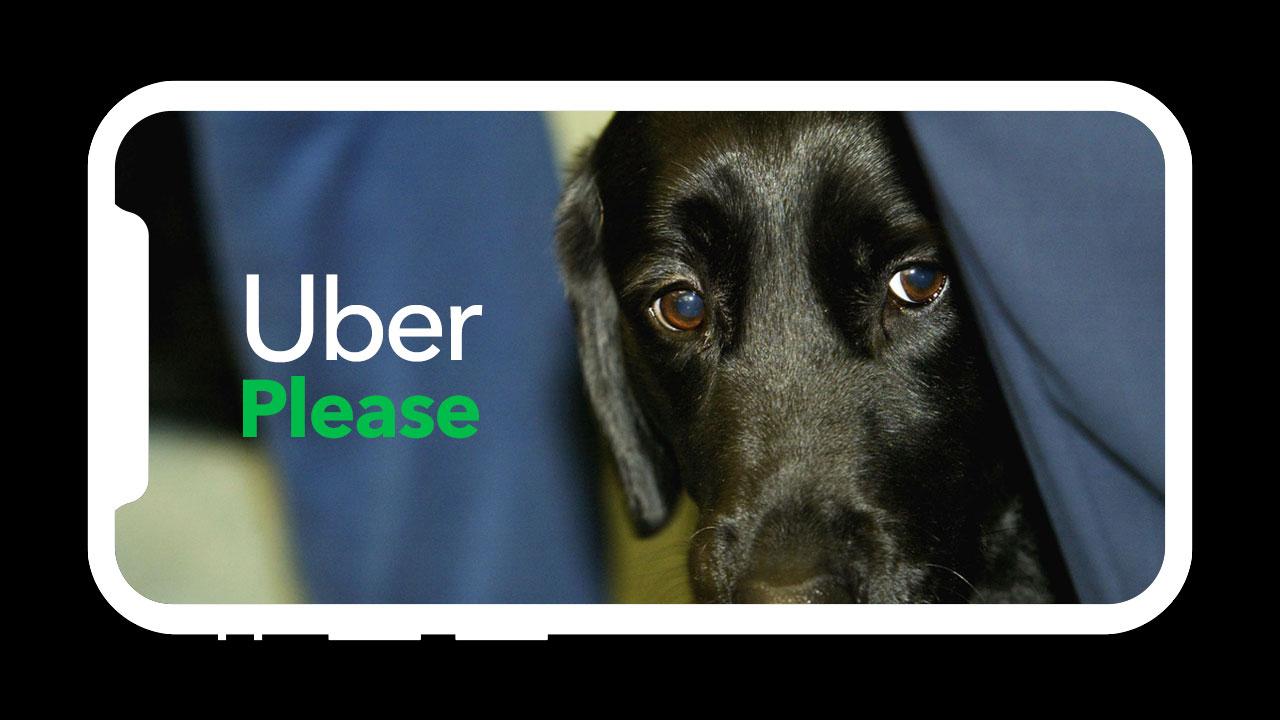 Uber ต้องจ่าย 1.1 ล้านดอลลาร์ เพราะปฏิเสธผู้หญิงตาบอด 14 ครั้ง